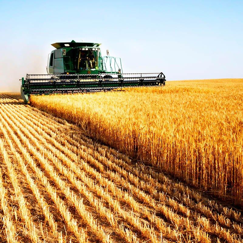 applicazioni per il settore agricoltura
